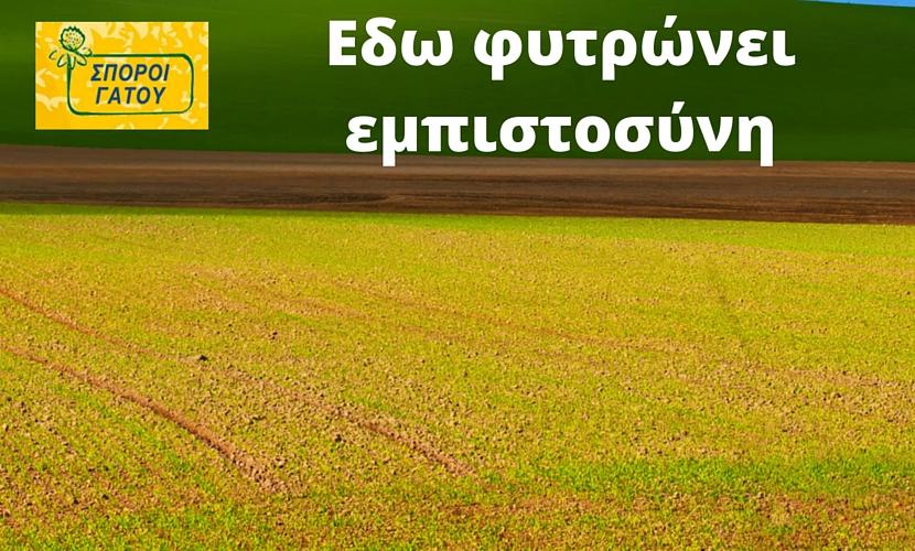 Σπόροι-για-κτηνοτροφικά-φυτά
